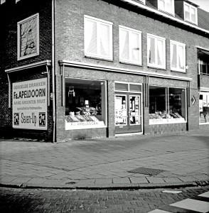 Groentewinkel Apeldoorn en rechts De Spar (eigenaar Gradus Visser). Nu de Action. Hoek Eikelaan / Wilgenkade ca 1970
